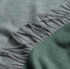 Alex Begg Product Detail